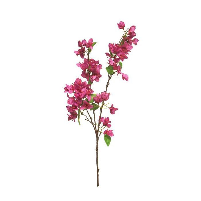 Bougainvillea roze