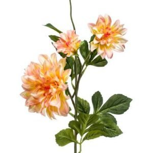 Dahlia geel/oranje