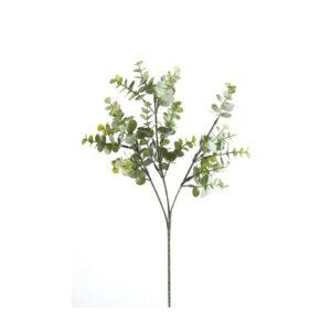 Eucalyptus 65 cm