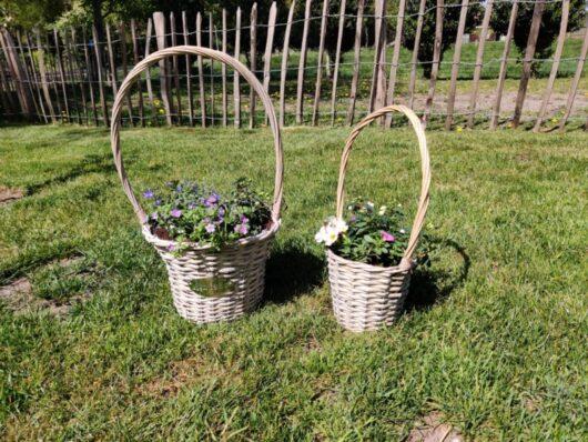 Mand met planten - klein